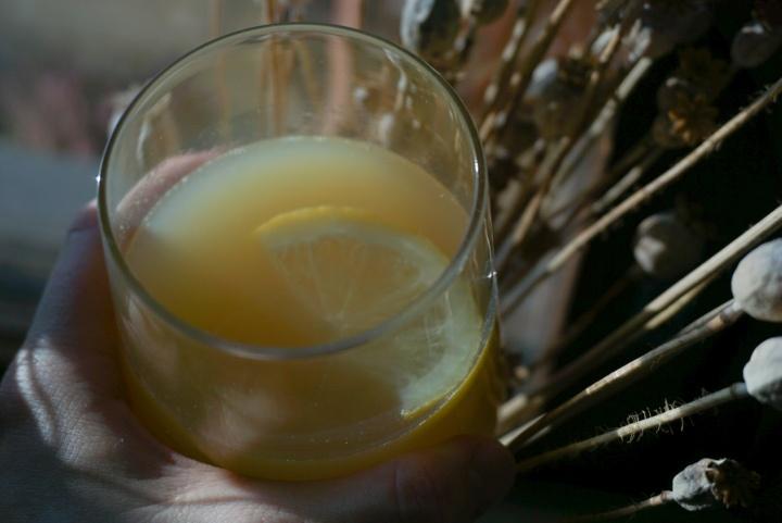 Potkua inkivääri-sitruunamehusta